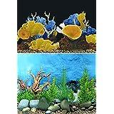 "9091 19.3"" x 48"" Double Sided Fish Tank Aquarium Background Landscape Seafloor / Golden Mushroom"