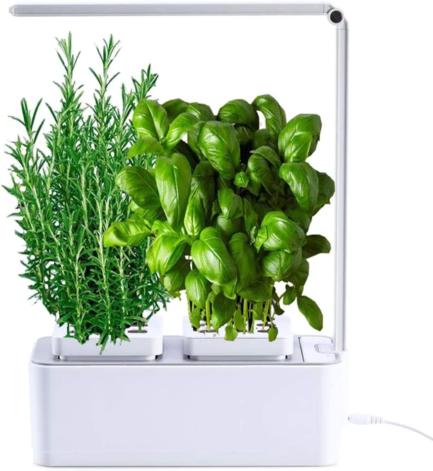 amzWOW Smart Garden Huerto de Interior 100% Eco, para Cultivar Plantas aromaticas Semillas Bio, Plantas Naturales Interior -Luz LED incluida - Dimensiones 28.5 x 11.7 x 37 cm