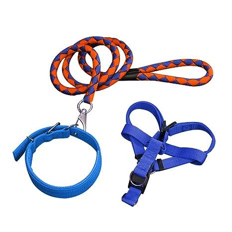 YSoutstripdu - Arnés de Cuerda de tracción para Perro, Correa para ...
