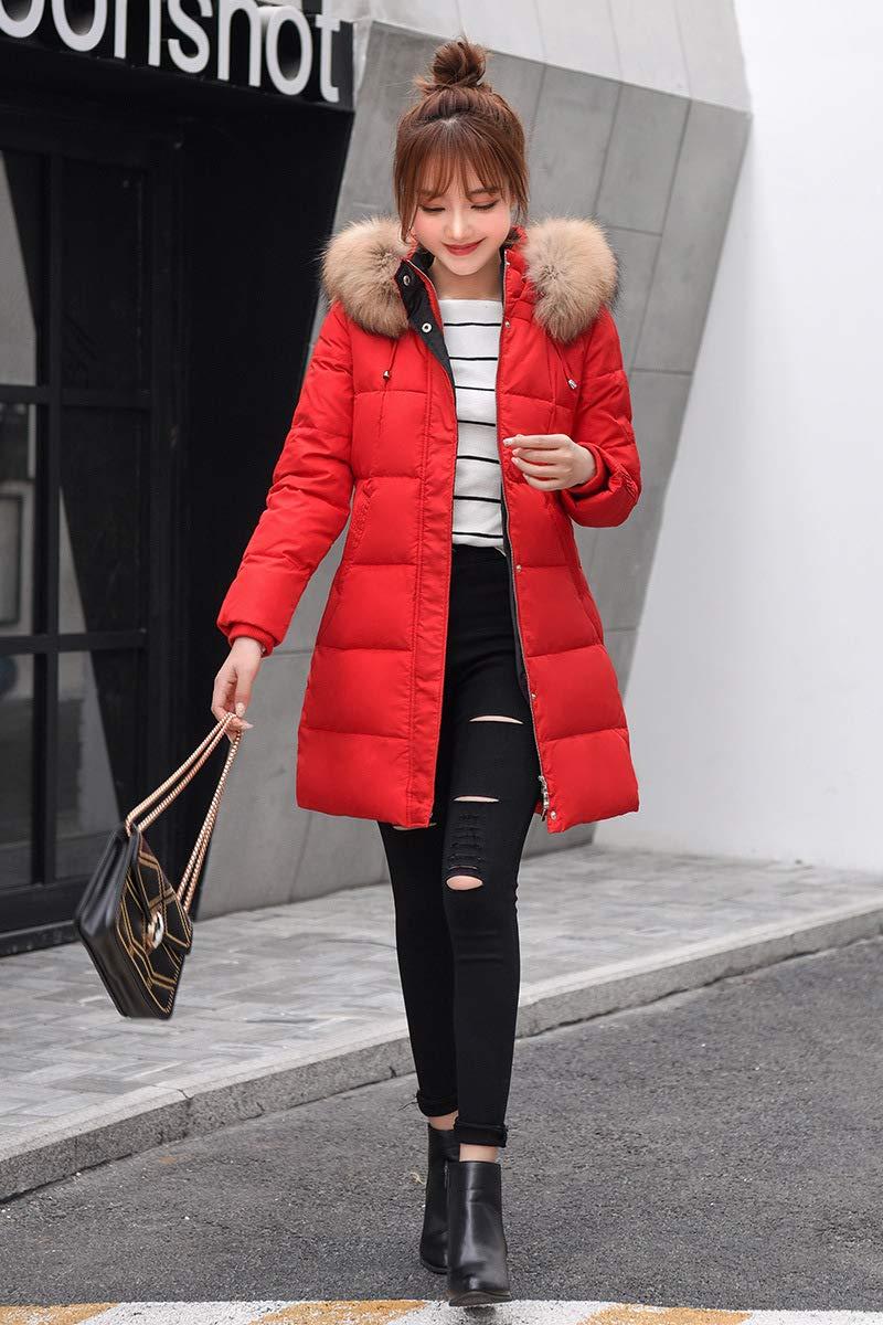 MINMINA Daunenjacke für Frauen, Daunenjacke hat, in der Sich die koreanische Version der Daunenjacke befindet