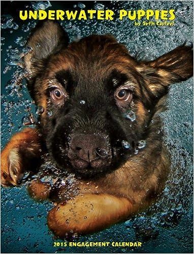 underwater puppies 2015 engagement calendar