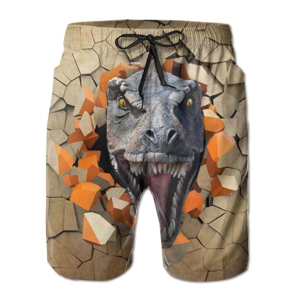 Tvsuh-u 3D Dinosaur Mens Beach Short Board Shorts Quick-Drying Swim Surf Trunks
