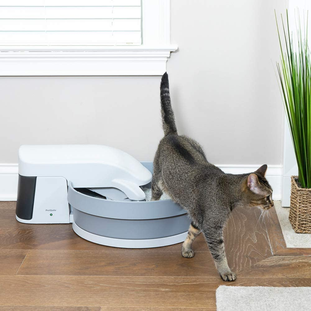 Top 10 Best Automatic Litter Box For Large Cats [Updated November 2020] 10