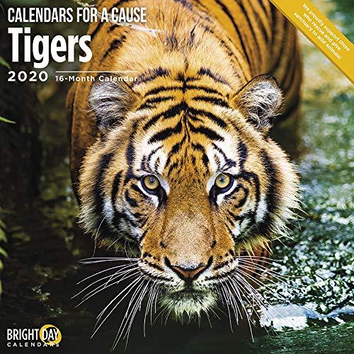 2020 Tigers Wall Calendar