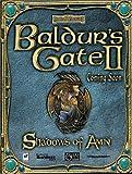 Baldur's Gate II: Schatten von Amn