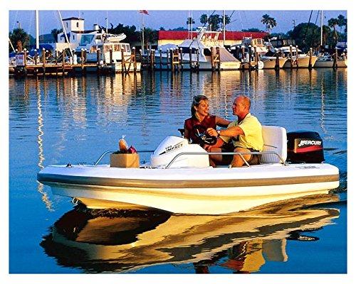 2002 Boston Whaler 120 Impact Power Skiff Photo Poster