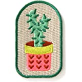 Cactus Plant Embroidered Sew or Iron-on Backing Patch