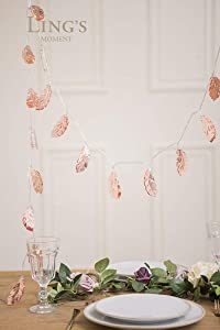 Ling's moment Rose Gold Feather String Lights Fairy Lights Battery Powered for Christmas Party Bedroom Bohemian Wall Decor,8Ft 20 LED
