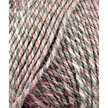 Plymouth (1-Pack) Encore Worsted Colorspun Yarn Raspberry Drift 7990-1P