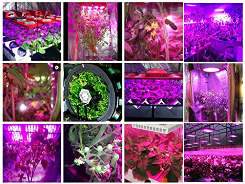 LED Grow Lights With UV/IR Lamp for Indoor Plants, 150W 50 Pcs LED ...