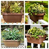 "Bloem Deck Balcony Rail Planter 24"" Terra Cotta"