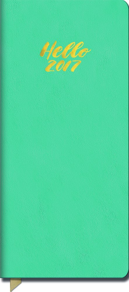 Read Online Orange Circle Studio 17-Month 2017 Leatheresque Jotter Agenda, Not Too Turquoise ebook