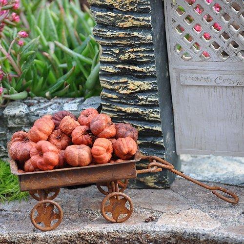 Miniature Fairy Garden Putka Pumpkins, 25 Pieces, Baby & Kids Zone