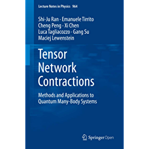 Tensor Network Contractions: Methods and Applications to Quantum Many-Body Systems (Lecture Notes in Physics Book 964)