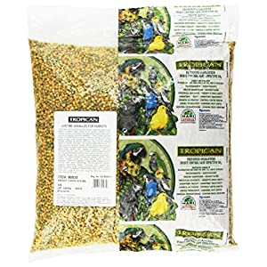 Tropican Lifetime Formula Maintenance Parrot Granules, 8-Pound 91