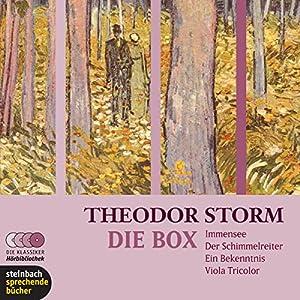 Theodor Storm. Die Box Hörbuch
