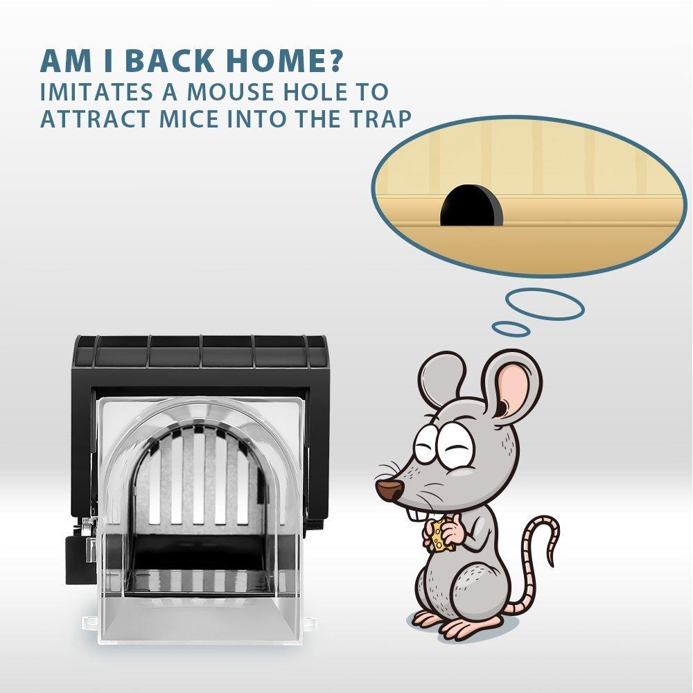 Homme Chat Rat Salle De Bain ~ everteco pi ge souris humain pi ge rongeurs attrape souris ne