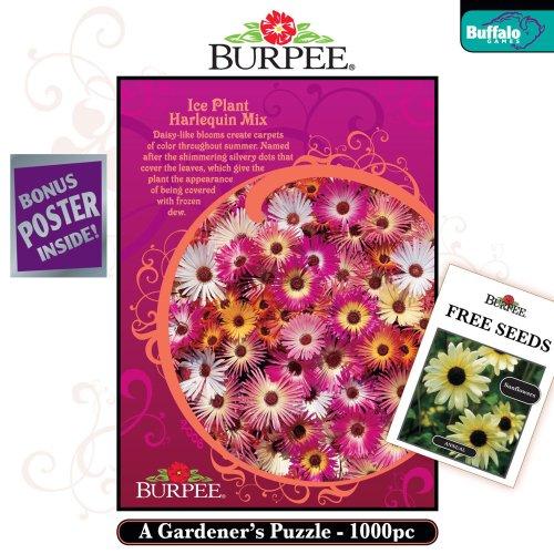 Buffalo Games Burpee: Ice Plant Harlequin -