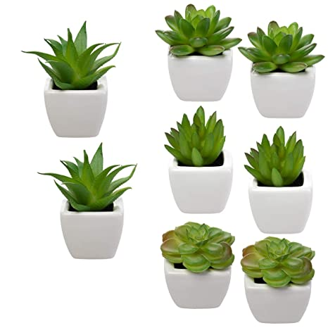 Merveilleux Set Of 8 Small Green Succulent Artificial House Plants Ceramic Pots Home  Office