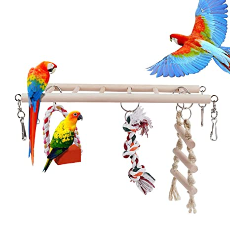 RCruning-EU Juguetes para pájaros Accesorios de Jaula Escalera de ...