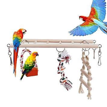 Juguetes Escalera Swing Macaw Para De Madera Loro Africanos Accesorios Parakeet Grises Pájaros Rcruning Jaula Eu Mascota Pájaro Juguete srhdQxtCB