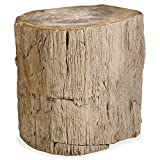 Kathy Kuo Home Inez Industrial Loft Petrified Wood Side End Table