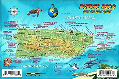 Puerto Rico Dive & Surf Map and Reef Creatures Guide Franko ...