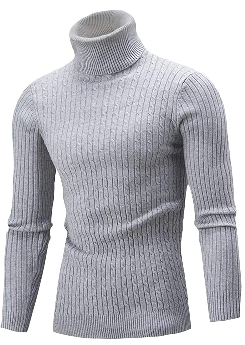 Pandapang Mens Cable Knit Casual Turtle Neck Autumn Winter Pullover Sweater