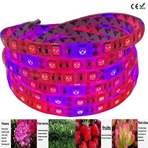 61CF1T ye4L - Lahoku LED Plant Grow Strip Light 16.4feet Full Spectrum SMD 5050 Red Blue 4:1 Rope Light with Power Adapter for Greenhouse Hydroponic Plant (5M)
