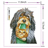 DIY 5D Diamond Painting Kits Full Kits, Astory Rhinestone Crystal Embroidery Pictures Cross Stitch for Home Room Decoration Dog and Cat 30x40 cm (11.8x15.7inch)