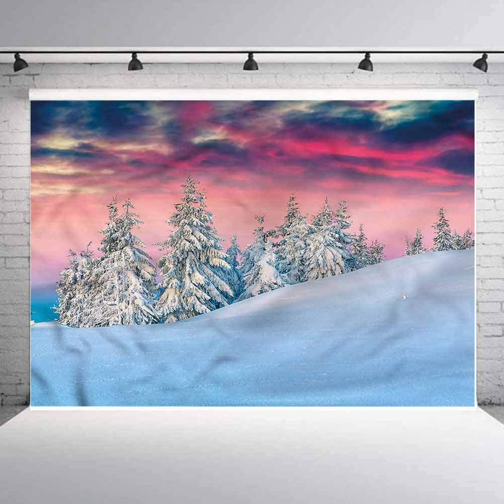8x8FT Vinyl Wall Photography Backdrop,Winter,Idyllic Scene Mountains Background for Baby Birthday Party Wedding Graduation Home Decoration