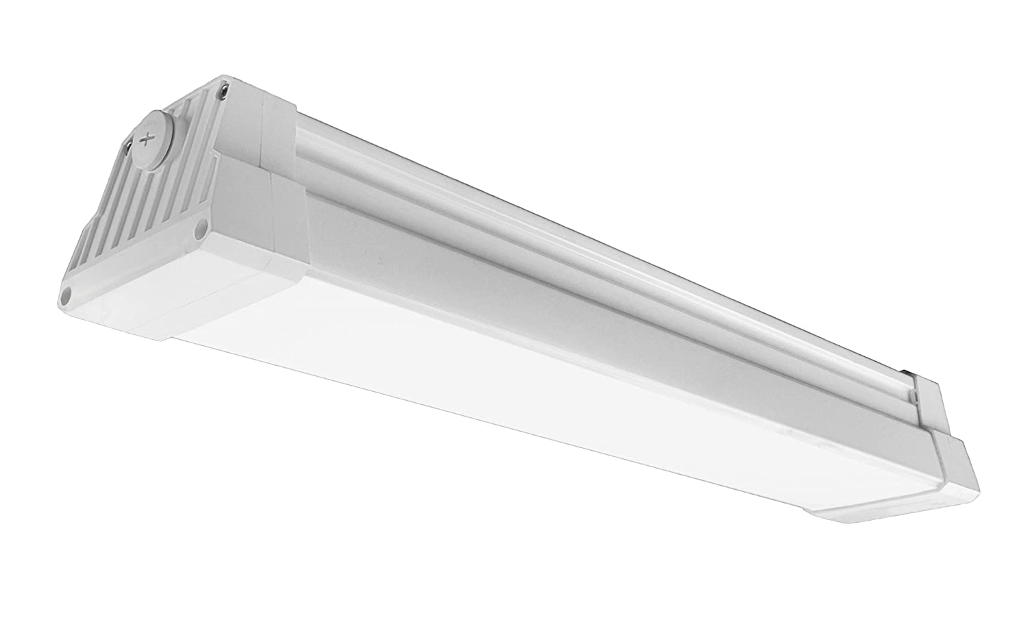 Lithonia Lighting Industrial 2-Extreme Light Outdoor Fluorescent Hanging Fixture