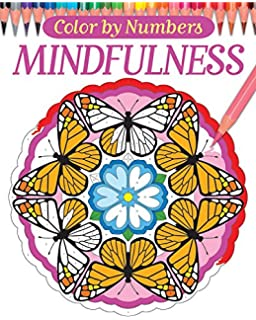 color by numbers mindfulness chartwell coloring books