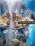 International New Glass, Dan Klein, 8877431725