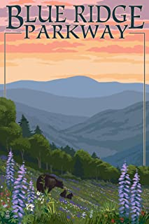 product image for Blue Ridge Parkway, Virginia - Bear Family and Spring Flowers (24x36 Giclee Gallery Print, Wall Decor Travel Poster)