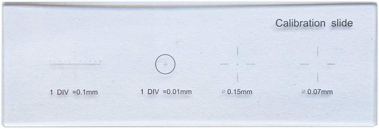 Microscope Micrometer Calibration Slide Stage Cross Reticle 0.01mm 5 Scales