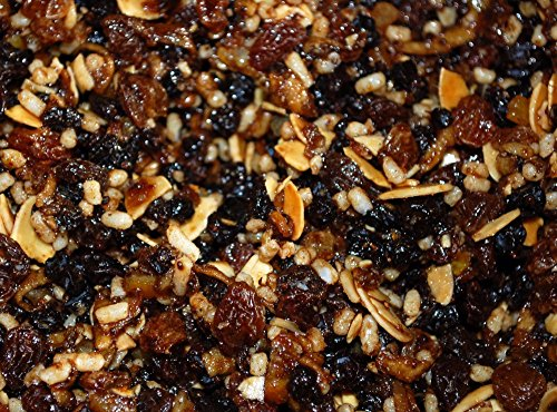 MINCEMEAT WITH SUET- 26.4lb by Dylmine Health