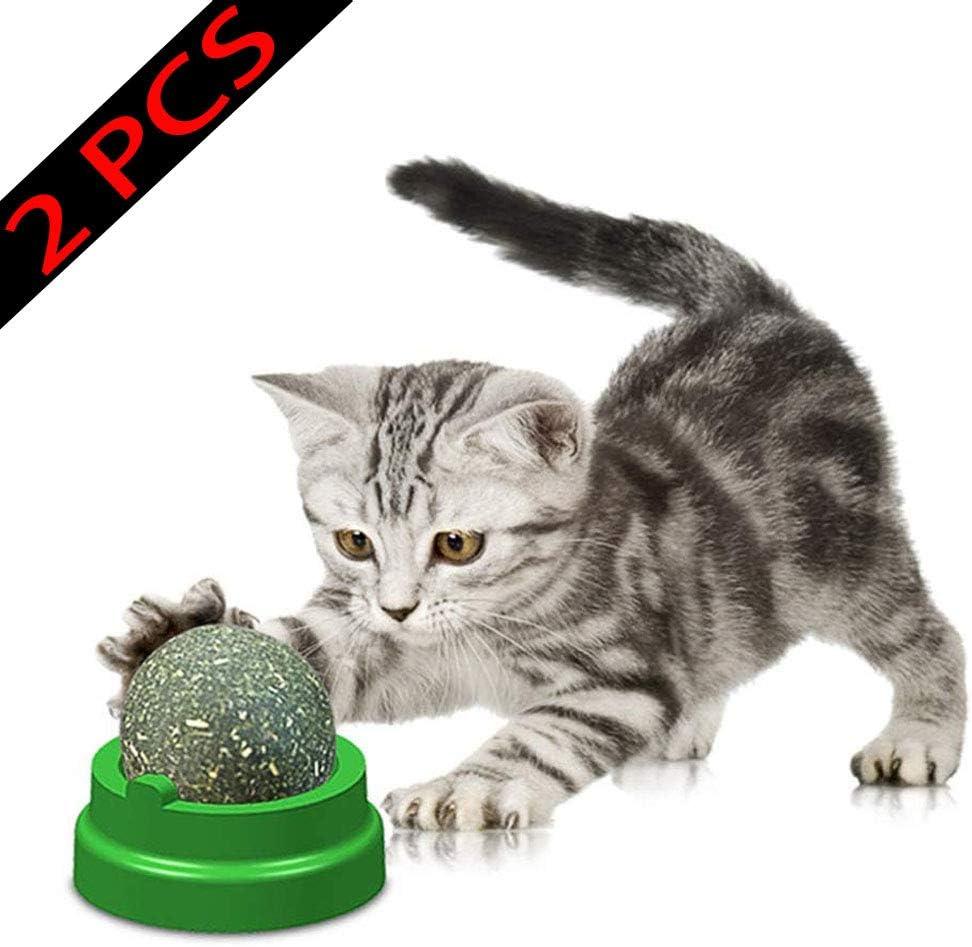 Cats Interactive Chew ball Toy for Kitten Kitty VICSPORT Cat Catnip Balls Toys