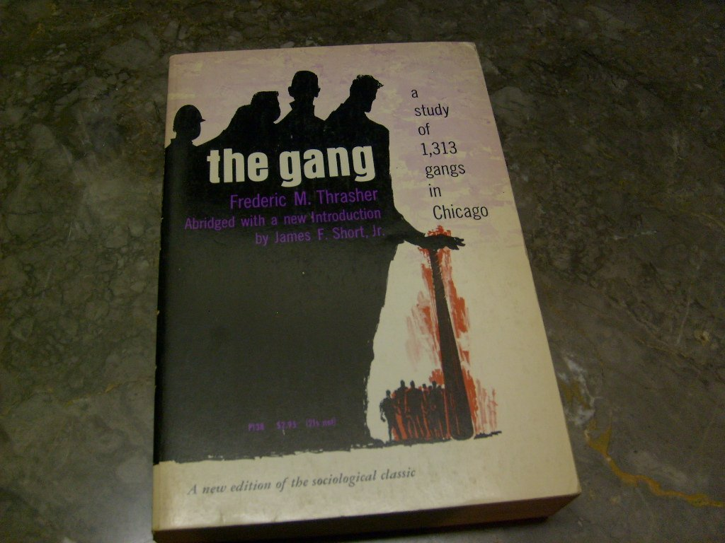 The gang: A study of 1,313 gangs in Chicago ebook
