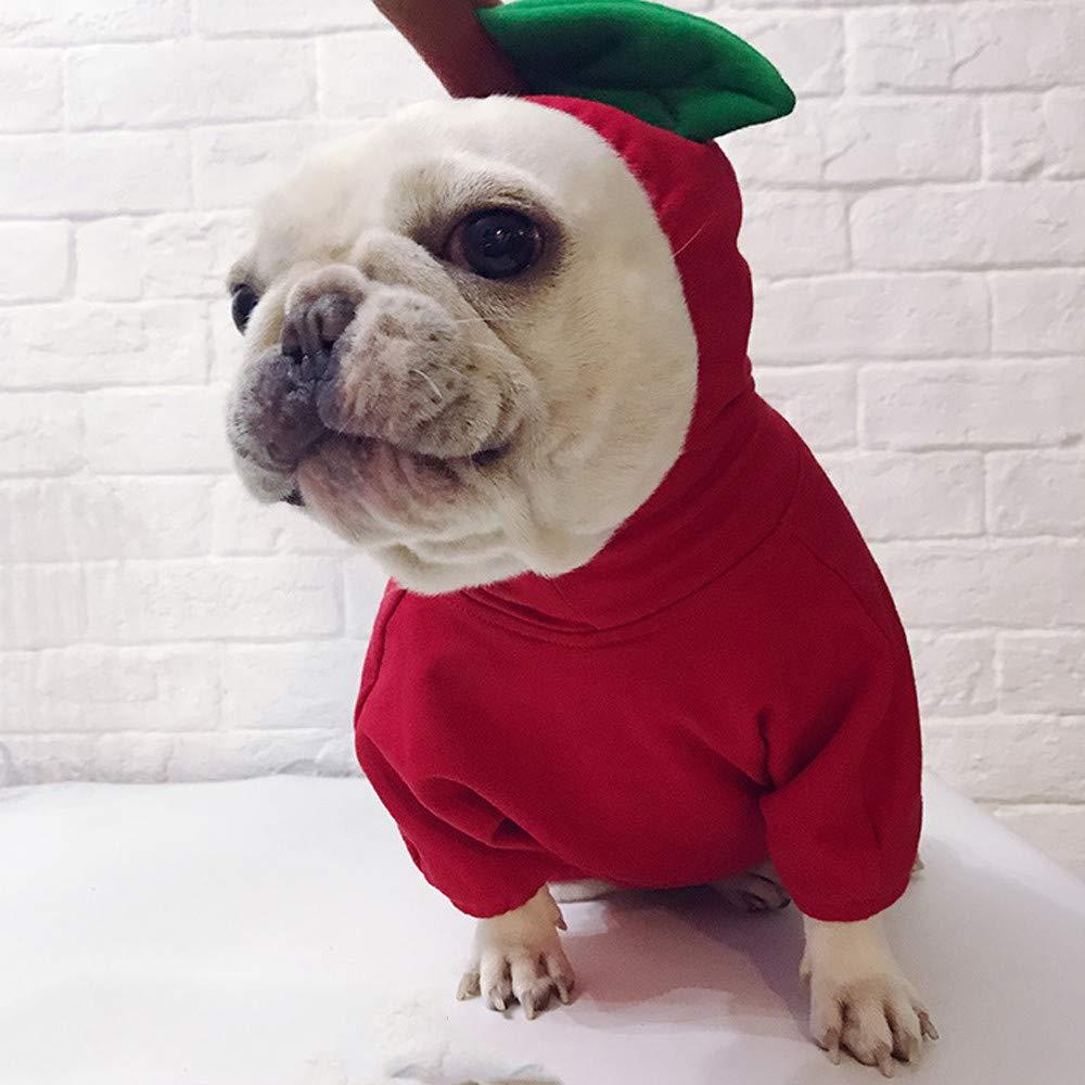 Sannysis Sudadera para Perro con Capucha, Suave y Cálida, para Invierno con Diseño de Bulldog Francés, Protector de (Rojo,Large): Amazon.es: Productos para ...