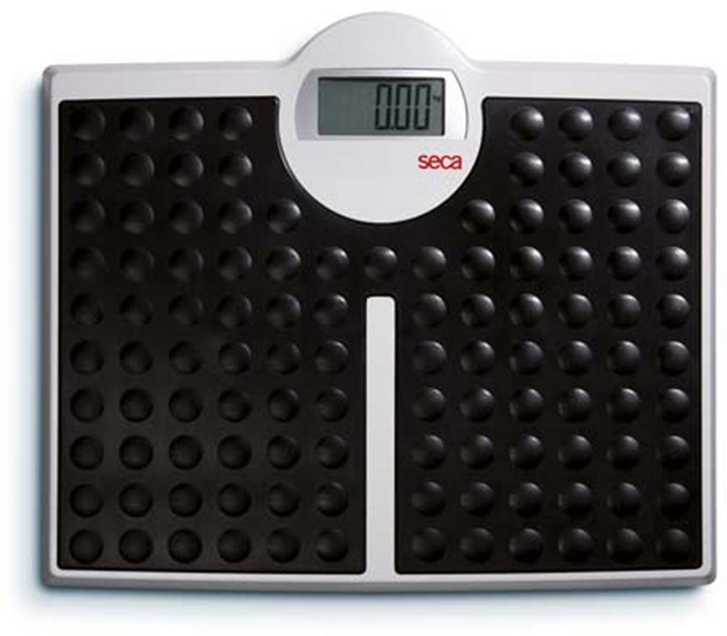 Seca High Capacity Digital Batteries 813 Weight Measurement Flat Scale