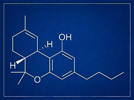 Amazon thc marijuana cannabis molecule chemistry blueprint thc marijuana cannabis molecule chemistry blueprint style art print 18x24 inch malvernweather Gallery
