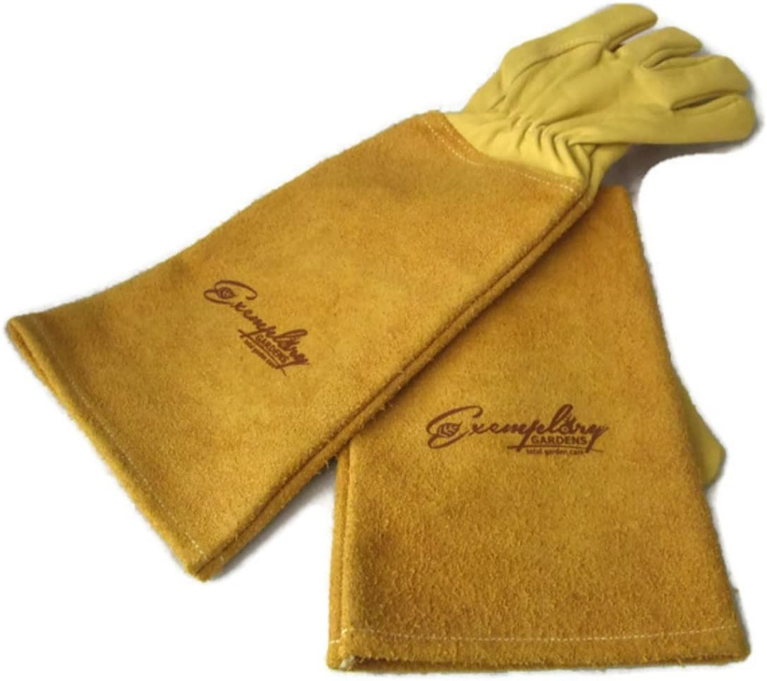 Rose Pruning Gloves for Men and Women. Thorn Proof Goatskin Leather Gardening Gloves with Long Cowhide Gauntlet to Protect Your Arms Until The Elbow (Medium, Yellow)