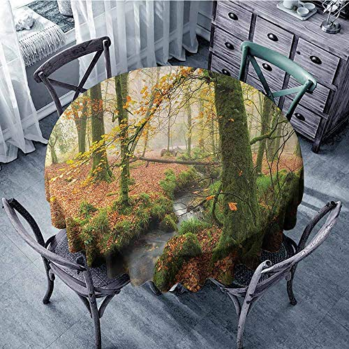 ScottDecor Polyester Round Tablecloth Woodland,Misty Autumn Woodland Stream at Golitha Falls on Bodmin Moor in Cornwall,Orange Green Yellow Printed Tablecloth Diameter 70