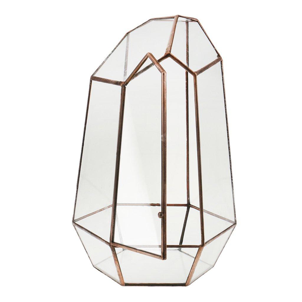 MagiDeal Irregular Glass Geometric Terrarium Box Tabletop Succulent Plant Planter S - Copper, 16 x 16 x 25cm