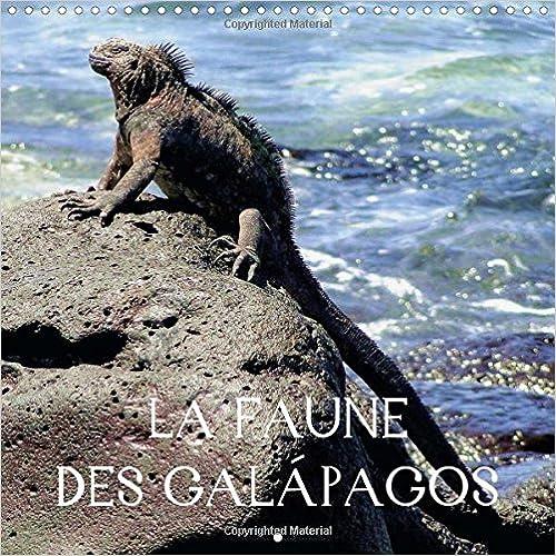 La Faune Des Galapagos: Des Images Fascinantes D'animaux Aux Galapagos, Que Vous Pourrez Decouvrir De Premiere Main Lors De La Visite Des Iles. pdf epub