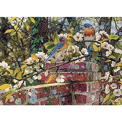 Cobble Hill 51845 Kemp Backyard Blues Puzzle 1000 Pezzi