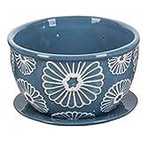 Berry Bowl and Plate Colander Set Ceramic (Blue)