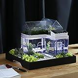 Acrylique Mini Micro Landscape Aquarium Bureau Desk Small Personal Ecology Salon multifonctionnel Aquarium créatif USB Powered LED fish tank lights