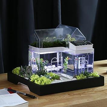 Acryl Mini Micro Landschaft Aquarium Büro Schreibtisch Kleine
